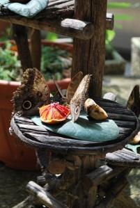 Butterflies in the Butterfly House in Collodi enjoy a sweet treat.