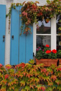 Colors of late summer and early fall adorn the windows in Bavaria.