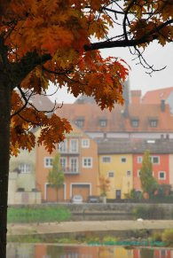 A view of the colorful houses of Bavaria through the trees