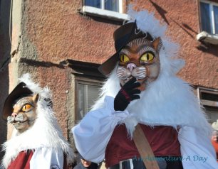 The masks include several animals. I have seen frogs, unicorns and rats, just to name a few!