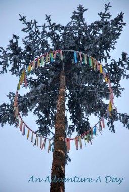 The Narrenbaum - the fool's tree.