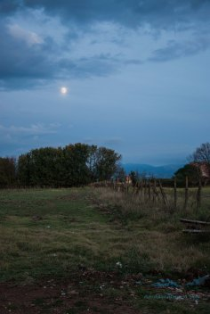 The cool evening air begins to settle, and most of the visitors are home. The silence on the Via Appia is heavenly.