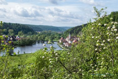 Some of our favorite breathing spaces in Germany were minutes away from our home.
