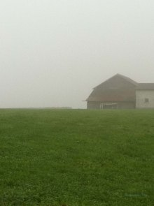 Early morning fog creates a romantic landscape.