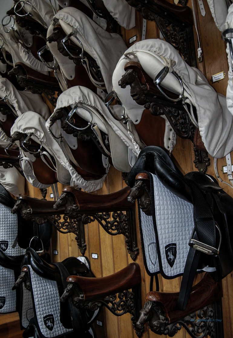 The Spanish Riding School's tack room