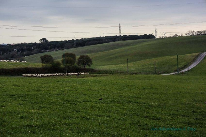The rolling hills of Lazio