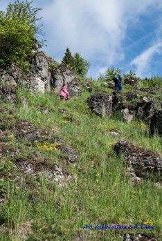 The kids test their mountain climbing skills.