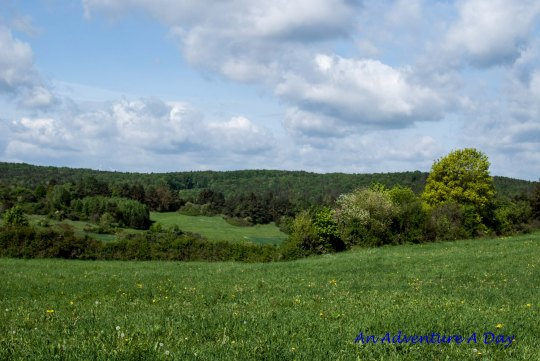 A wide open field beckons to you - it's the perfect place to stop and watch the clouds roll past.
