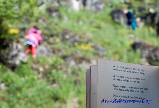 A perfect day scampering in the fields with a book.