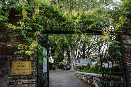 Open gates closed garden_edited-1001